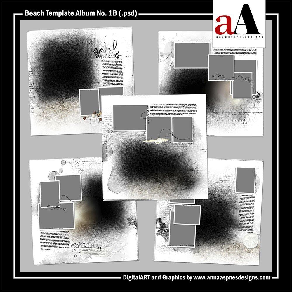 AASPN_BeachTemplateAlbum1B1000