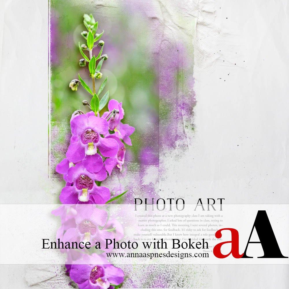 Tutorial | Enhance a Photo With Bokeh