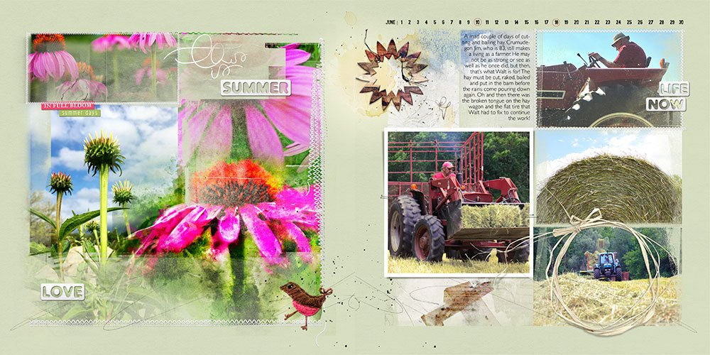 FotoInspired Inspiration June 2017