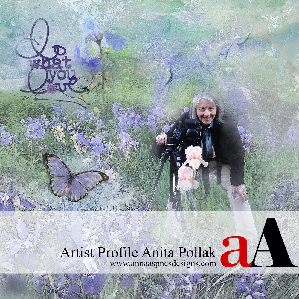 Artist Profile Anita Pollak