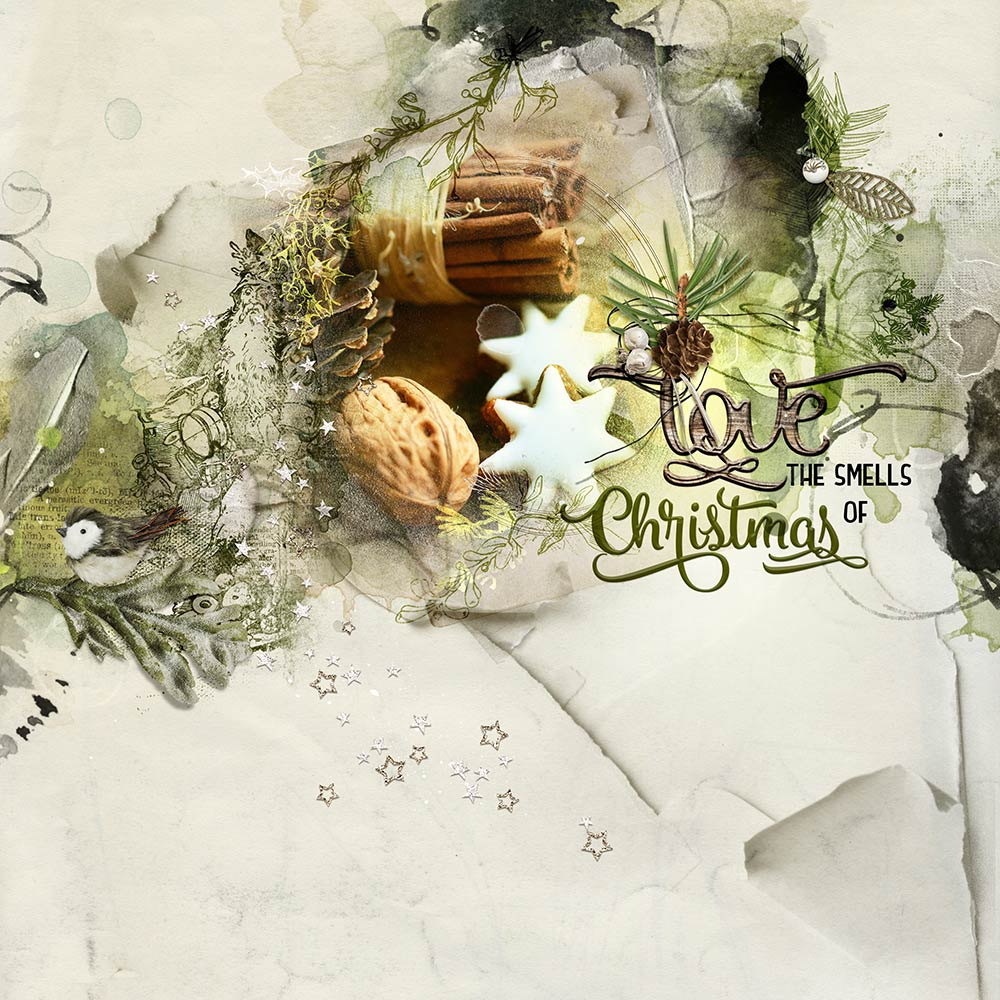 Digital Designs Inspiration Mistletoe