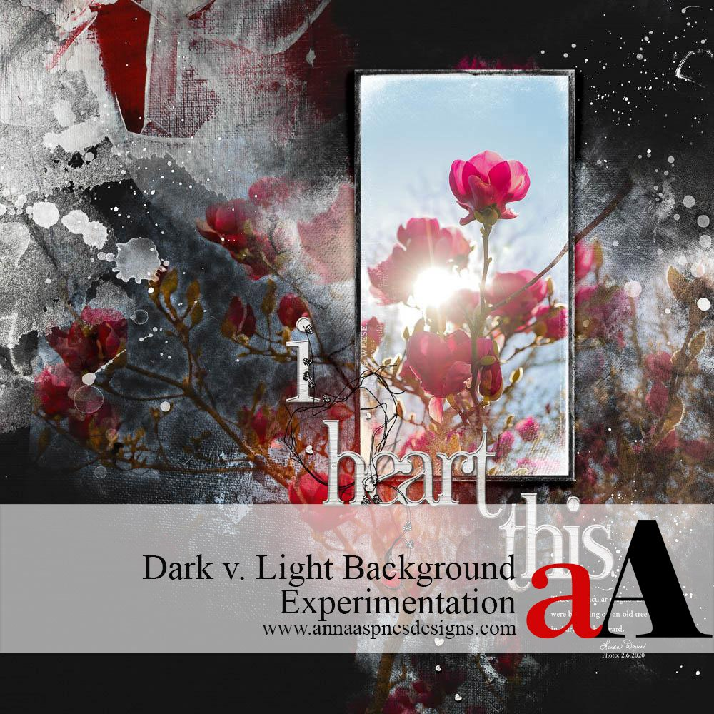 Light v. Dark Background Experimentation